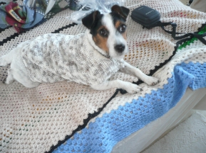 Fenda new crochet coat