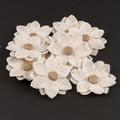 3260839-120x120 jute flowers