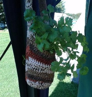 mixed herbs basket