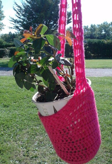 Rose hanging basket